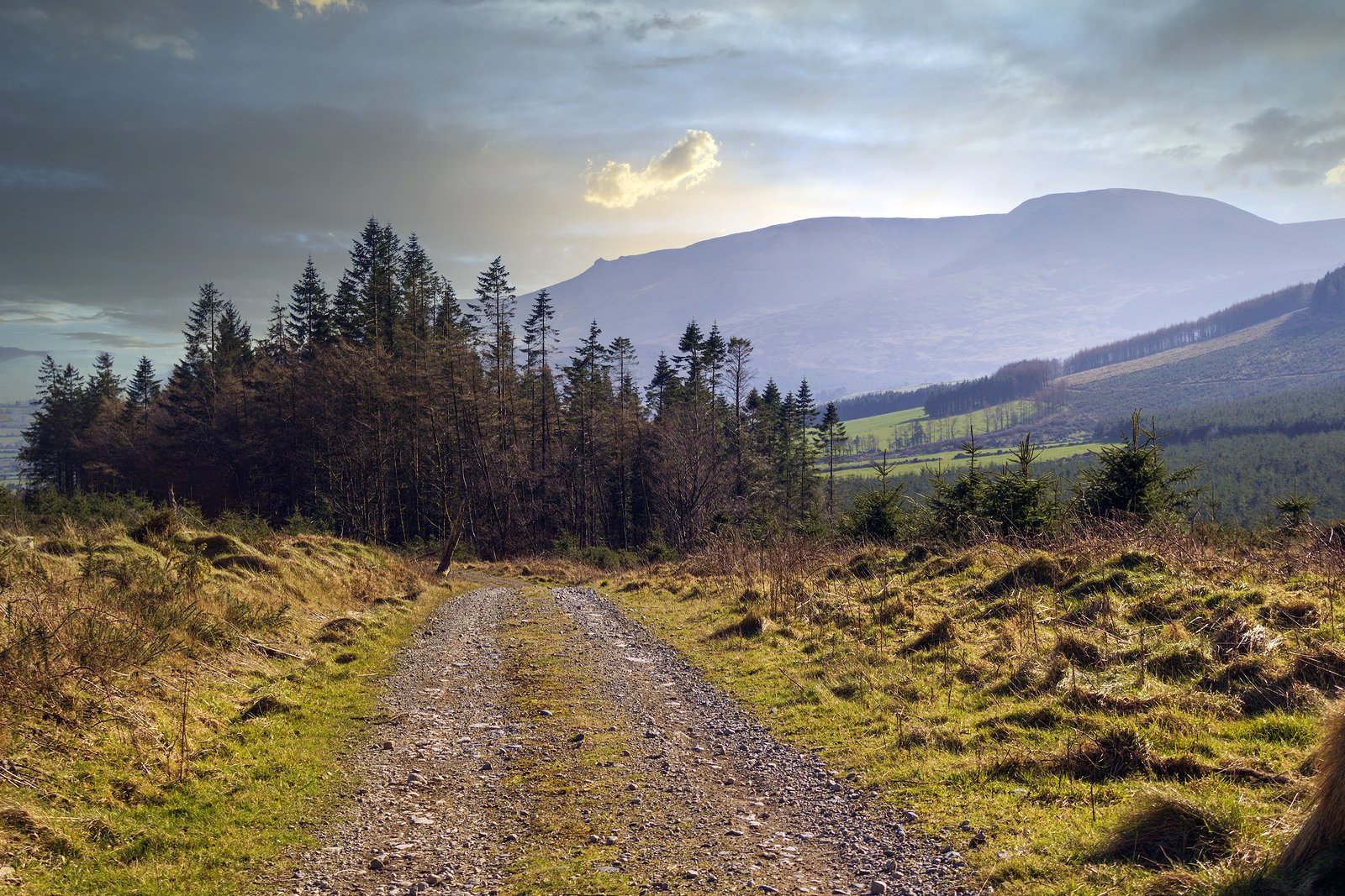 What age can you rent a car in ireland